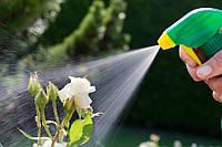 Какой опрыскиватель купить: обзор популярных садовых распылителей