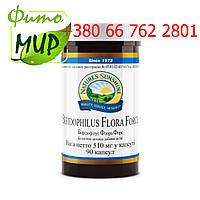 Бифидофилус Флора Форс (Bifidophilus Flora Force) восстанавливает иммуните  и нормальную флору кишечника