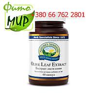 Экстракт листьев оливы, Nsp.  Olive Leaf Extract Экстракт Листьев Оливы НСП. Натуральная Биодобавка.