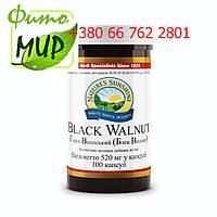 Грецкий орех, черный (Black Walnut)при паразитарних інвазіях, глистів у дітей та дорослих.