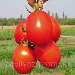 Семена томата Надежда 10.000 тыс. семян
