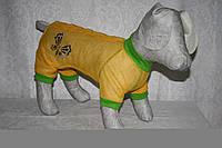 Комбинезон  для собаки  Лето, фото 1
