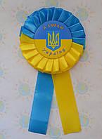 Значок Україна з розеткой символіка