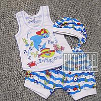 Детский летний костюм 80-86 9-12 мес комплект для мальчика майка шорты и шапочка на лето из КУЛИР 3654 Голубой, фото 1