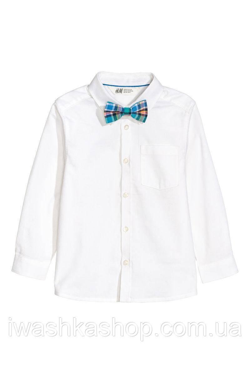 Стильная белая рубашка с бабочкой для мальчика 9 - 10 лет, H&M р. 140