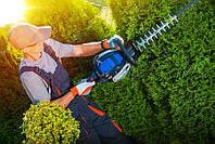Что выберем для огорода, бензиновый двигатель или электрический?
