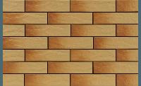 Фасадная плитка Cerrad 65×245×6 мм GOBI
