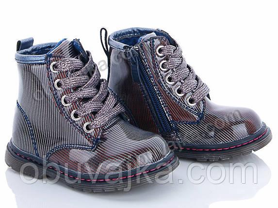 Демисезонная обувь оптом Ботинки от фирмы С Луч для девочек оптом(21-26), фото 2