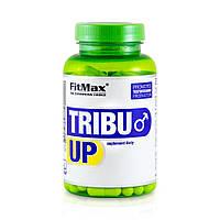Трибулус FitMax Tribu Up (120 капс)