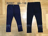 Лосины для девочек оптом, Grace, 86-116 см,  № G82287