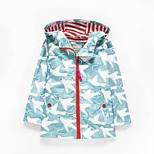 Уценка (дефекты)! Куртка для девочки Чайки Meanbear