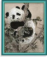 Репродукция  современной картины  «Панда» 30 x 40 cm
