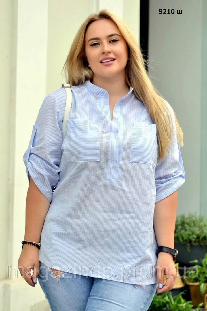 Рубашка женская с кнами 9210 ш Код:732201407