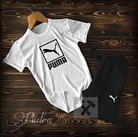 Мужской спортивный костюм «Puma»из хлопка, футболка с шортами (48-52)