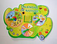 Календарь природы на английском языке. calendar of Nature Зелёный