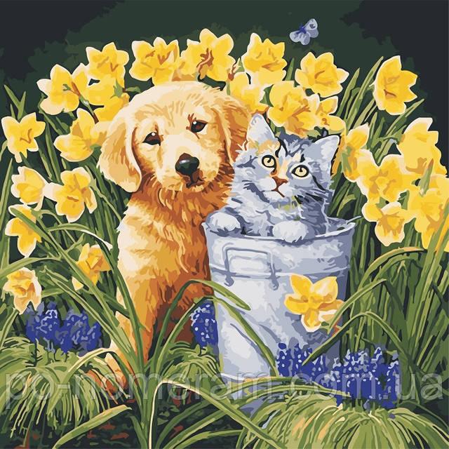 Живопись по номерам собака и кот