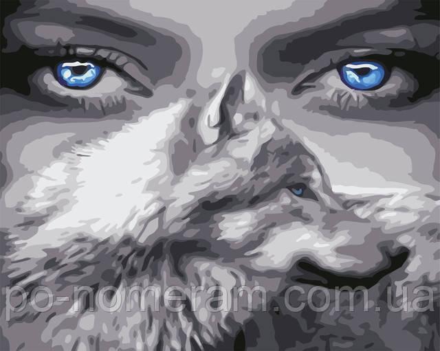 Картина раскраска Взгляд волчицы