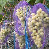 Сетка для винограда 50 шт (сетка-мешок для защиты от ос) 5 кг 28*40 см