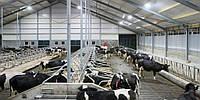 Будівництво та модернізація тваринницьких комплексів +, фото 1