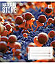 Тетрадь в клетку 48 л. Yes А5 Natural stone 762048, фото 2