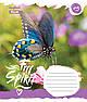 Тетрадь в косую 12 л. 1 Вересня А5 Butterfly Spirit 761877, фото 2