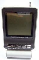 Калькулятор-радио в ''magic-box'' ZJ-172