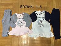 Набор двойка для девочек с легким начесом оптом,  F&D 1-5 лет.,арт. FD7644, фото 1