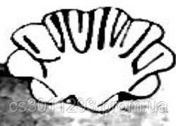 Форма для пирожных 6 штук Pedrini (Италия),Формы для тарталеток, Формы для кексов, фото 2