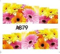 Слайд для дизайна ногтей A879