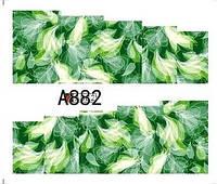 Слайд для дизайна ногтей A882