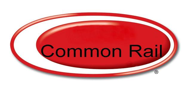 Распылитель Common Rail /