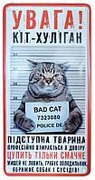 Табличка металлическая Кіт-хуліган, 15 × 30 см, Це Добрий Знак