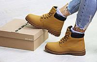 1f8b1cd8f Зимние женские ботинки timberland в Украине. Сравнить цены, купить ...