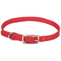 Coastal Nylon Web ошейник для собак, 1х30 см ярко-розовый | 1x30 см