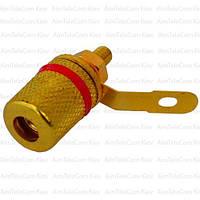 Штекер акустический Banan, монтажное, корпус металлический gold, красное