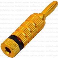 Штекер акустический Banan, под кабель, gold, корпус металлический (Тип3)