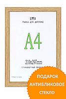 Фоторамка пластиковая цвет светлый орех 21*30(А4). Рамка для диплома.