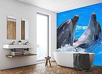 Керамическая фотоплитка Print Color Дельфины Игра Дельфинов