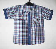 Рубашка Клетка рост 110-116см