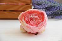 Пионы Соланж ,  розовые        20 шт , фото 1