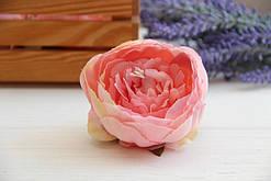 Пионы Соланж ,  розовые        20 шт