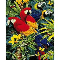 Картина по номерам Четыре попугая 40Х50см Mariposa Q2122