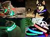 Ошейник LED светящийся узкий для небольших собак и кошек 0.5 м, фото 8