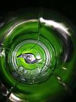 Портативный блендер СY-802 Green, фото 2