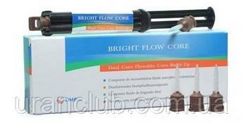 Композитный материал двойного отверждения BRIGHT Flow CORE (Брайт флоу кор)кликер 10г + 6 насадок
