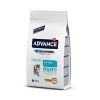 Advance (Эдванс) Cat Kitten корм для котят 10кг