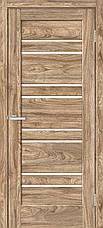 Двери Омис RINO-01. Полотно+коробка+1 к-т наличников, NATURAL LOOK, фото 2