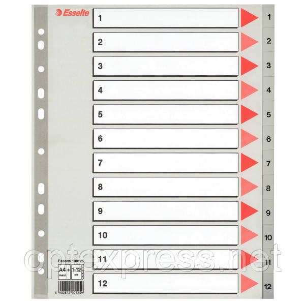 Разделители пластиковые из ПП, цифровые A4 Esselte, 1-12 maxi