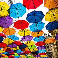 Какие есть разновидности зонтов?