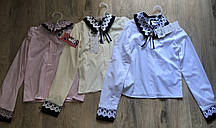 Блузка  для девочек с длинным рукавом (2706/10)
